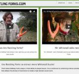 Rattling Forks website design by N.A.I. Multimedia Studios